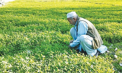 Mini-budget dashes farmers' hopes