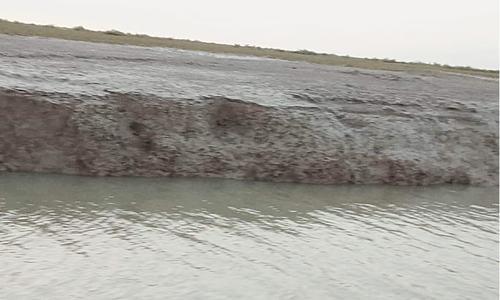 Water expert appeals not to politicise debate over dam