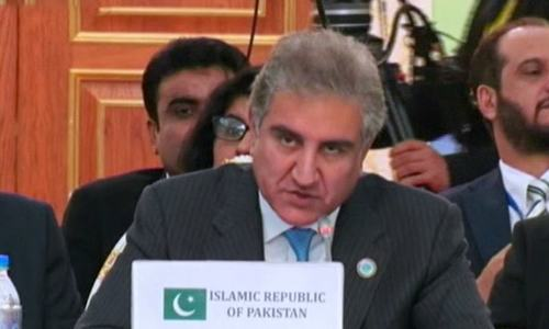 FM Qureshi says SCO 'more than just a regional platform'