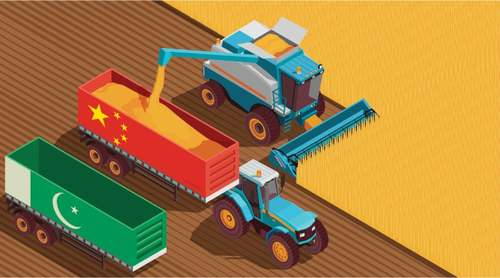 Chinese help in agriculture