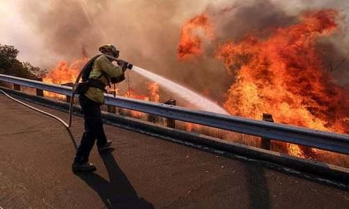 امریکا: کیلی فورنیا میں لگنے والی آگ سے ہلاکتوں کی تعداد 42 ہوگئی