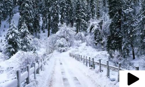ایبٹ آباد کے سیاحتی مقام گلیات میں موسم سرما کی پہلی برفباری