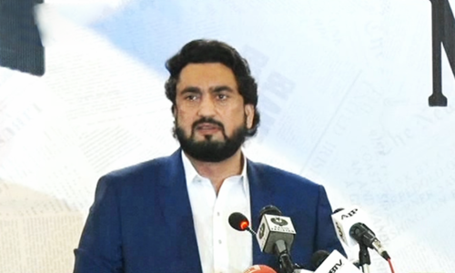 Shehryar Afridi urges media to play its due role in safeguarding national security