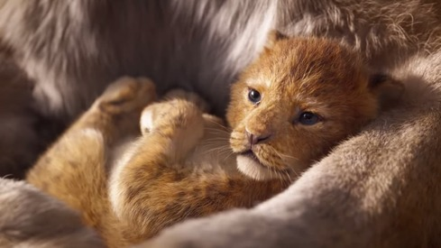 The Lion King remake's teaser trailer captures the essence of its original
