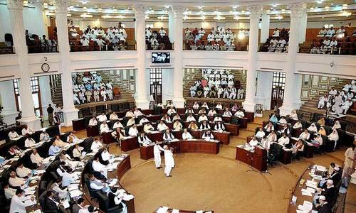Ruling party MPs overshadow provincial KP Assembly panel