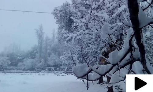 مری میں موسمِ سرما کی پہلی برفباری کے بعد دلفریب نظارے