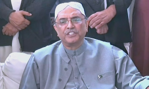 Don't want to encourage 'aggressive force' by weakening institutions: Zardari
