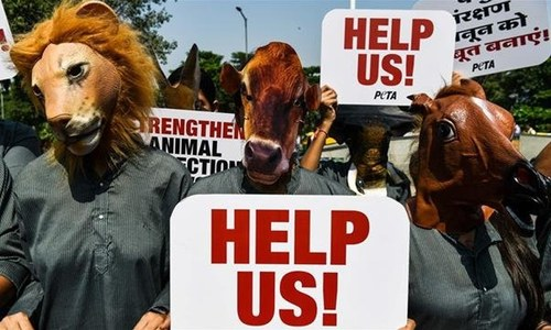 فرانس: منصوعات کی تیاری میں جانوروں کی کھالیں استعمال کرنے کےخلاف 'برہنہ' احتجاج