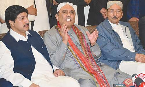 Zardari sees early polls, asks institutions to stay neutral