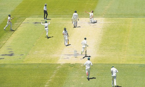 Rejuvenated Aussies subdue India to level series