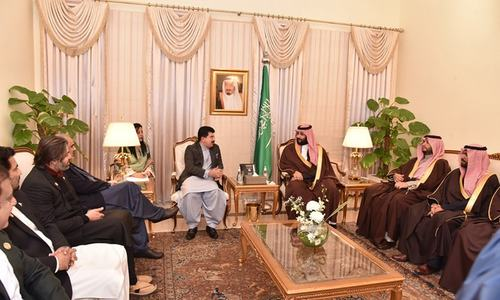 Lawmakers led by Senate Chairman Sadiq Sanjrani meet Saudi Crown Prince Mohammad bin Salman. — Photo by author