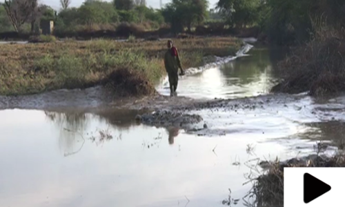 بلوچستان میں موسلادھار بارش کے بعد سیلابی صورتحال
