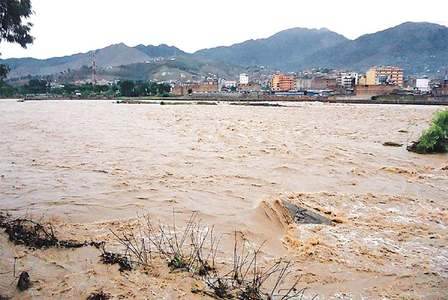 Govt likely to miss wheat crop target amid rains