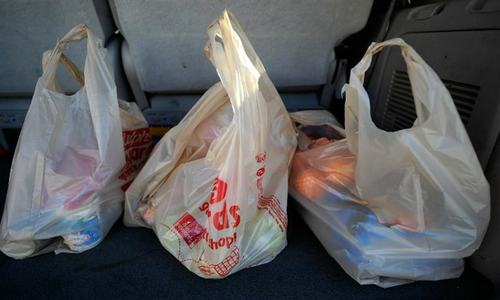Traders agree to use biodegradable shopping bags