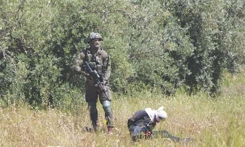 Israeli troops accused of shooting at handcuffed Palestinian