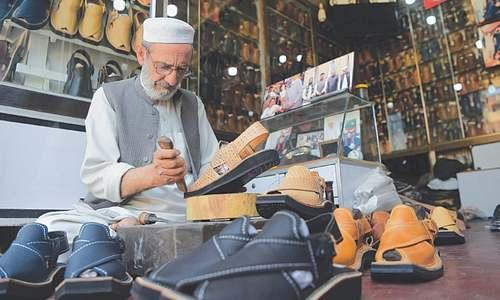 Snakeskin shoes for PM seized by KP govt - Pakistan - DAWN COM