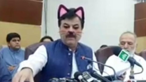 KP ministers accidentally used a cat filter during a press conference live stream