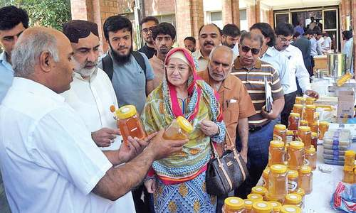 Over 12,000 tons of honey produced annually, says minister