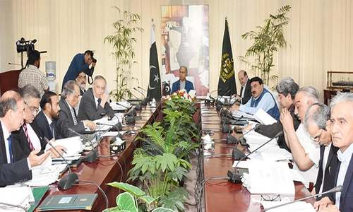 ECC takes no decision on wheat export, power rates for industry