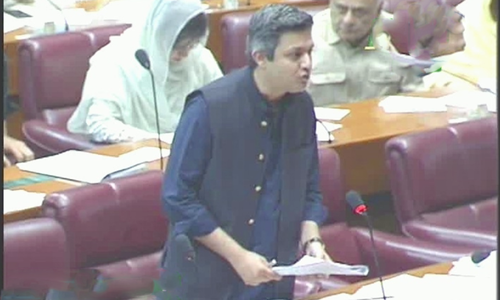 Budget 19-20: National Assembly votes on demands moved by Hammad Azhar