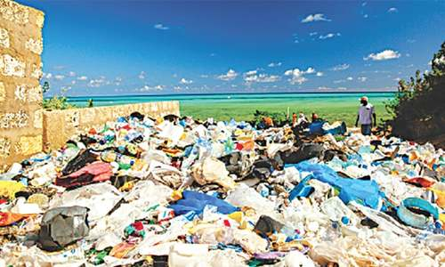 ENVIRONMENT: HOW MUCH PLASTIC ARE WE EATING?