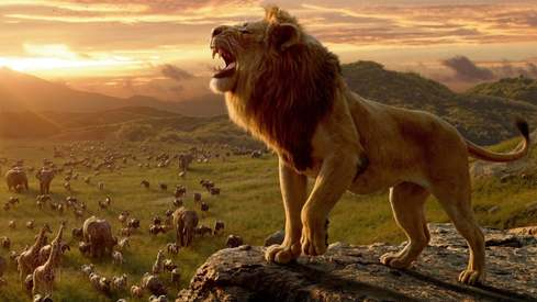 Original animator of The Lion King calls the live-action remake cheap