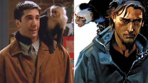 Remember the Friends monkey Marcel? She's making a TV comeback