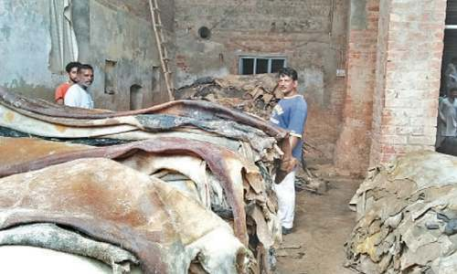 Flawed economic policy takes its toll on leather industry