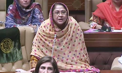 'Witch-hunt' of politicians, businessmen will lead to 'economical meltdown': Faryal Talpur