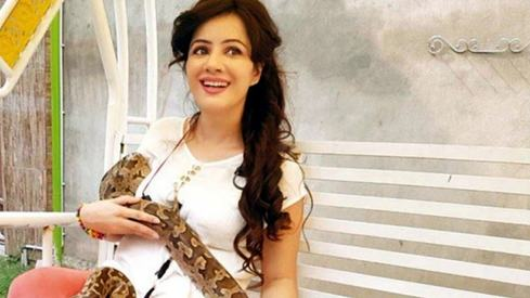 Singer Rabi Pirzada possibly faces jail term for keeping exotic animals as pets