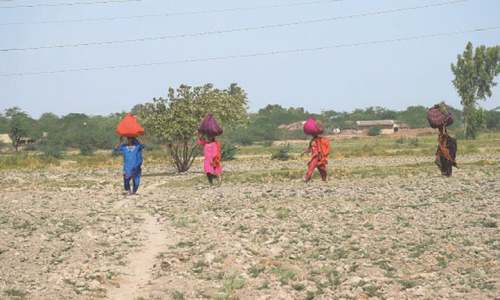 Lack of substantial progress on climate change may see Sindh lose a large chunk of the GDP