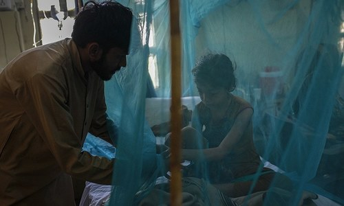 Dengue cases to reduce when temperature drops to 13°C in Rawalpindi