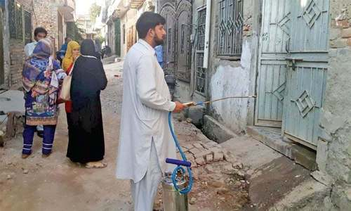 Dengue cases in Taxila, Wah rise to 43