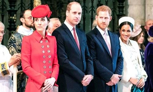 کیا شہزادہ ہیری ذہنی بیماری کا شکار ہیں؟