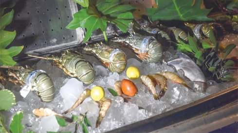 Karachi enjoys the catch of the day at Casbah's Seafood Festival