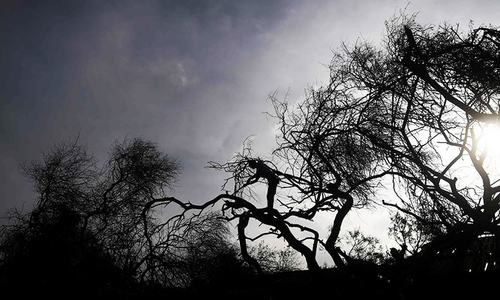 6 dead as cyclone Bulbul smashes into India, Bangladesh coasts