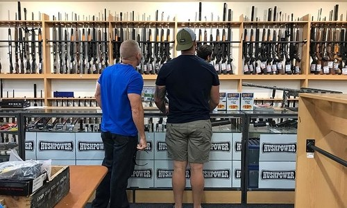 New Zealand could ban some criminals from being near guns