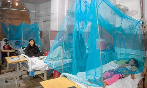 Countrywide dengue cases nearing 50,000