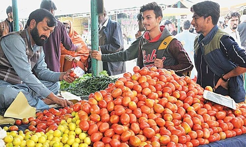 ٹماٹر کی قیمت 400 روپے فی کلو کی ریکارڈ سطح پر پہنچ گئی
