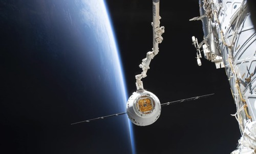SpaceX delivers 'mighty mice', worms, robot  to International Space Station