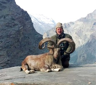 Italian hunts highest-rated Astore Markhor
