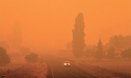 $17m raised as Australia reels from bushfires