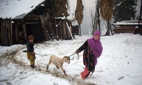 11 killed, dozen injured as AJK receives heavy snowfall