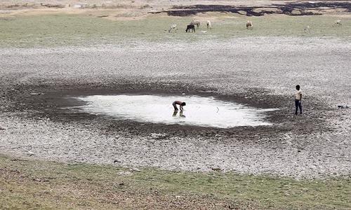 اگلے 5 سال میں پانی کی وجہ سے ملک میں خانہ جنگی کا خطرہ؟