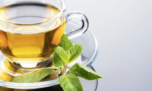 سبز چائے صحت کے لیے کس حد تک فائدہ مند ہوتی ہے؟