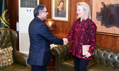 سیکریٹری خارجہ کی ایلس ویلز کو مقبوضہ کشمیر میں انسانی حقوق کی صورتحال سے آگاہی