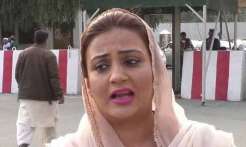 Turning up the (w)heat: PFA chairman sends 15 bags of flour to PML-N's Uzma Bukhari