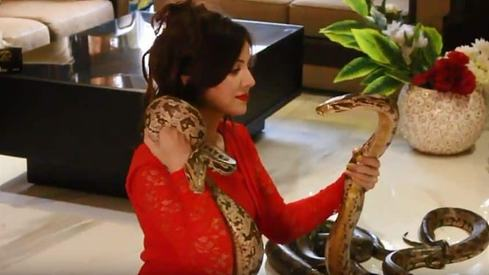 Rabi Pirzada acquitted in keeping wild reptiles case