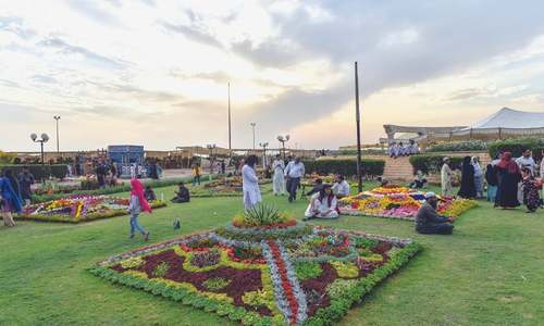 Huge crowds throng flower show