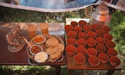 Hindu group touts cow urine as elixir for coronavirus
